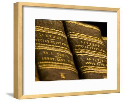 Books in the Library of Carl Linnaeus-Mattias Klum-Framed Photographic Print