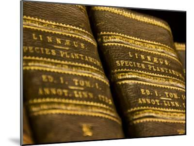 Books in the Library of Carl Linnaeus-Mattias Klum-Mounted Photographic Print