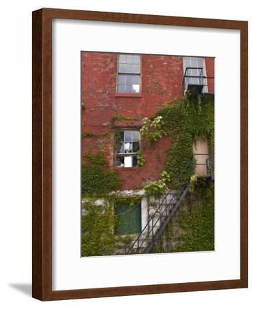 Part of a Brick Wall with a Fire Escape-Todd Gipstein-Framed Photographic Print