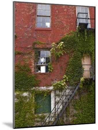 Part of a Brick Wall with a Fire Escape-Todd Gipstein-Mounted Photographic Print