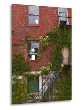 Part of a Brick Wall with a Fire Escape-Todd Gipstein-Metal Print