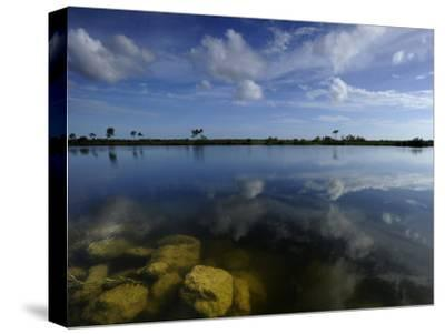 Cloud Reflections in Still Water in Everglades National Park-Raul Touzon-Stretched Canvas Print