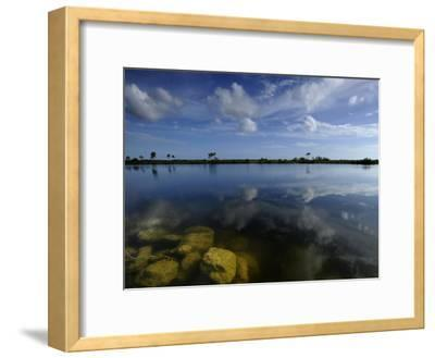 Cloud Reflections in Still Water in Everglades National Park-Raul Touzon-Framed Photographic Print