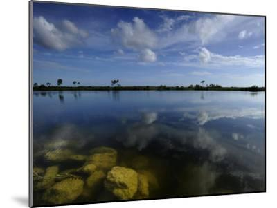 Cloud Reflections in Still Water in Everglades National Park-Raul Touzon-Mounted Photographic Print