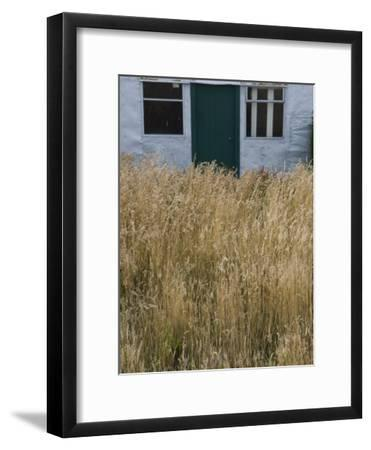 Tall Grasses Growing Up to the Door and Windows of a Building-Kent Kobersteen-Framed Photographic Print