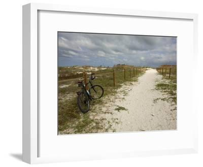 Path Leads to the Beach at St. George's Island, Florida-Stephen Alvarez-Framed Photographic Print