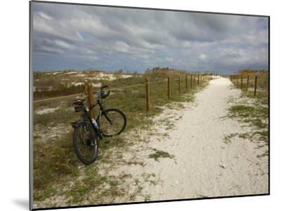 Path Leads to the Beach at St. George's Island, Florida-Stephen Alvarez-Mounted Photographic Print
