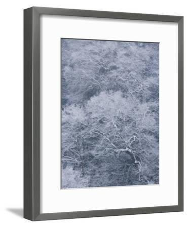 January Storm Covers Newfound Gap with Snow-Michael Melford-Framed Photographic Print