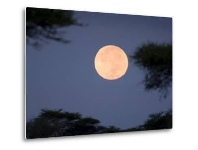 Full Moon Rises over the Serengeti Plains-Ralph Lee Hopkins-Metal Print