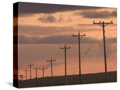 Row of Telephone Poles at Sunset in Rural North Dakota-Phil Schermeister-Stretched Canvas Print