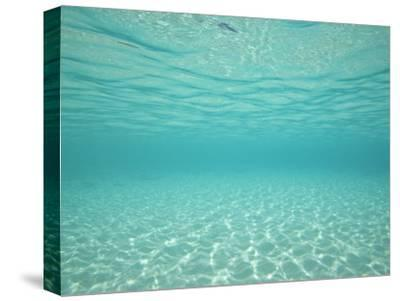 Underwater Shot of Clear Blue Water and White Sand-Michael Melford-Stretched Canvas Print