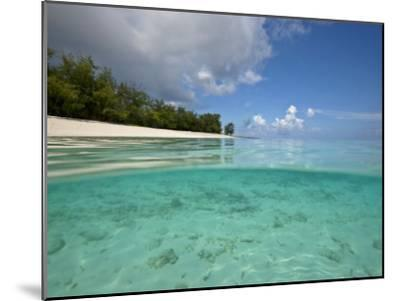 Split-Level View of Blue Water and White Sand in the Seychelles-Michael Melford-Mounted Photographic Print