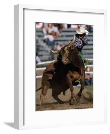 Rodeo Competitor in a Steer Riding Event-Chris Johns-Framed Photographic Print