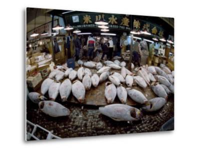 Tuna Caught in the Indian Ocean Await Buyers at Tsukiji Fish Market-Paul Chesley-Metal Print