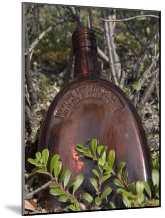 Old Railroad Era Relics in Wrangell Saint Elias National Park, Alaska-Rich Reid-Mounted Photographic Print
