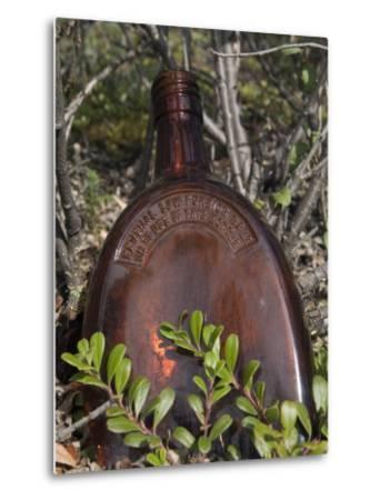 Old Railroad Era Relics in Wrangell Saint Elias National Park, Alaska-Rich Reid-Metal Print