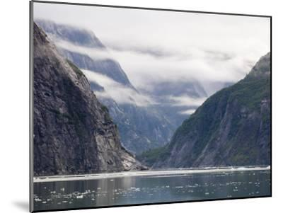 Fog Shrouded Fjords of Tracy Arm-Rich Reid-Mounted Photographic Print