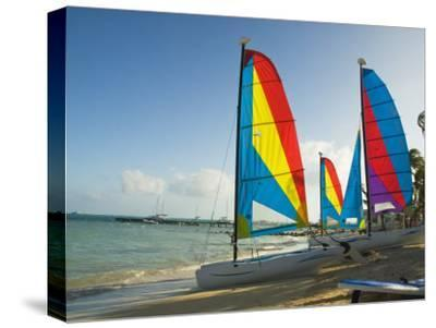 Catamarans with Colorful Sails on a Beach-James Forte-Stretched Canvas Print