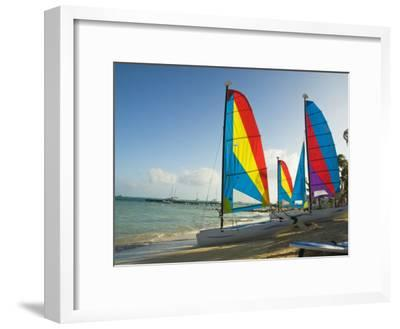 Catamarans with Colorful Sails on a Beach-James Forte-Framed Photographic Print