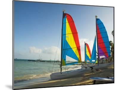 Catamarans with Colorful Sails on a Beach-James Forte-Mounted Photographic Print