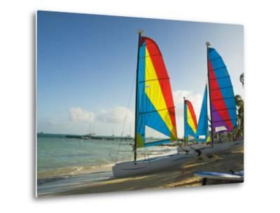 Catamarans with Colorful Sails on a Beach-James Forte-Metal Print