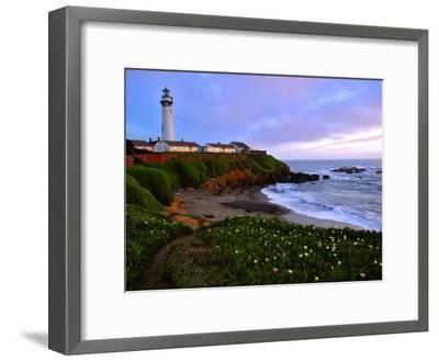 View of Pigeon Point Lighthouse, Off Scenic Route 1,California-Raymond Gehman-Framed Photographic Print