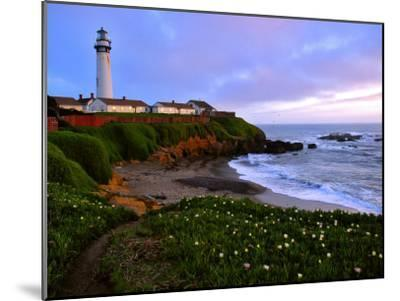 View of Pigeon Point Lighthouse, Off Scenic Route 1,California-Raymond Gehman-Mounted Photographic Print