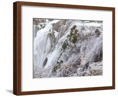 Winter Scene with Ice-Covered Plants in Front of Shoshone Falls-Darlyne A^ Murawski-Framed Photographic Print
