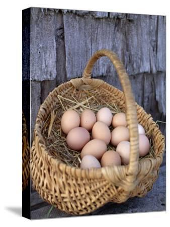 Basket of Brown Eggs-Michael Melford-Stretched Canvas Print