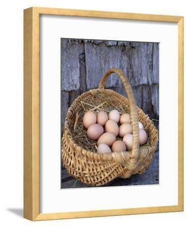 Basket of Brown Eggs-Michael Melford-Framed Photographic Print