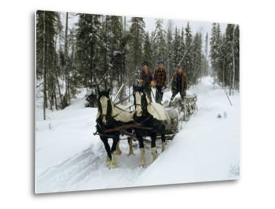 Loggers Haul Freshly Cut Timber on a Horse-Drawn Sleigh-B^ Anthony Stewart-Metal Print