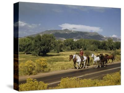 Rancher Leads His Horses on Country Road, Mountains Line Horizon-Justin Locke-Stretched Canvas Print