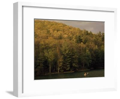 Outdoorsmen Enjoying a Day in a Small Boat on Watoga Lake-Raymond Gehman-Framed Photographic Print