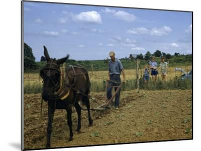 Children Watch a Farmer and His Mule Cultivate a Tobacco Field-William Gray-Mounted Photographic Print