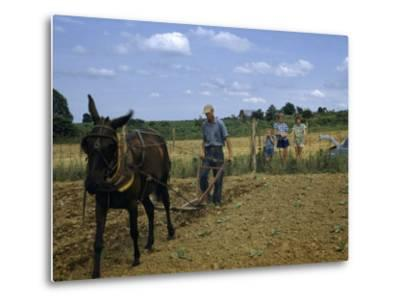 Children Watch a Farmer and His Mule Cultivate a Tobacco Field-William Gray-Metal Print