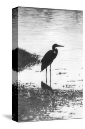 Heron--Stretched Canvas Print