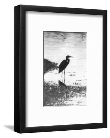 Heron--Framed Art Print