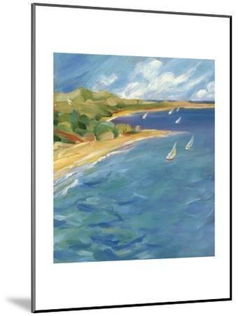 Sailboats Near the Coast--Mounted Art Print