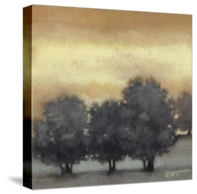 Tranquil Landscape VI-Norman Wyatt Jr^-Stretched Canvas Print