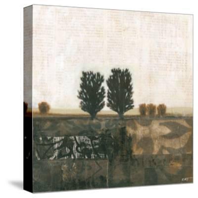Global Landscape I--Stretched Canvas Print