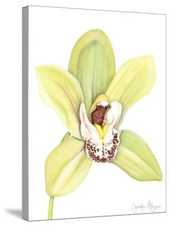 Orchid Beauty II-Jennifer Goldberger-Stretched Canvas Print