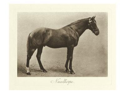 Nunthorpe-Clarence Hailey-Framed Art Print