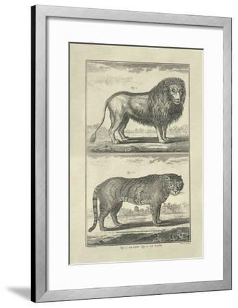 Lion and Tiger-Denis Diderot-Framed Art Print