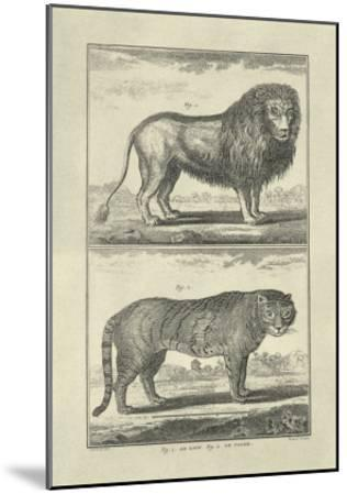 Lion and Tiger-Denis Diderot-Mounted Art Print