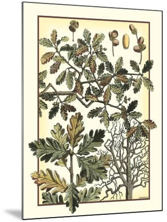Arts and Crafts Oak-M^P^ Verneuil-Mounted Art Print