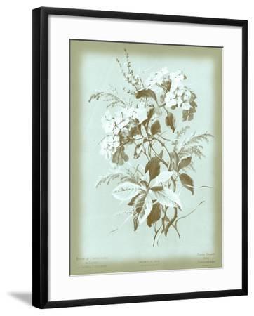 Dussurgey Hydrangea on Blue-Dussurgey-Framed Art Print