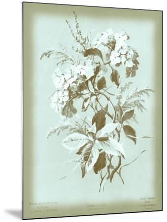 Dussurgey Hydrangea on Blue-Dussurgey-Mounted Art Print
