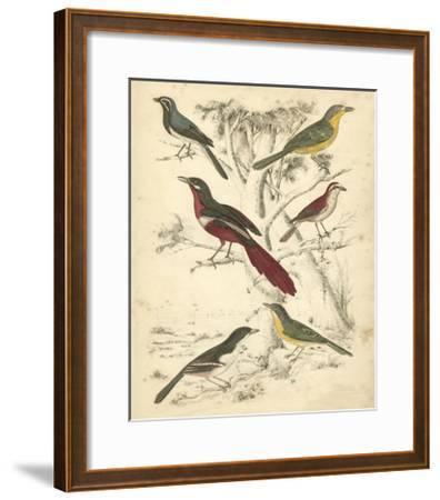 Avian Habitat IV-Milne-Framed Art Print