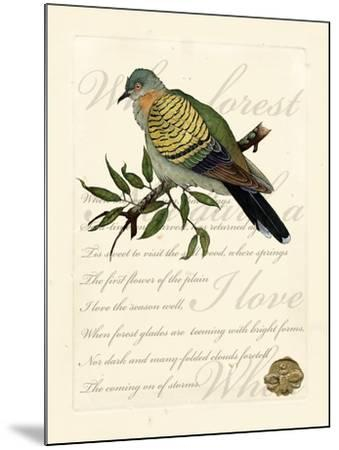 Romantic Dove I-Vision Studio-Mounted Art Print