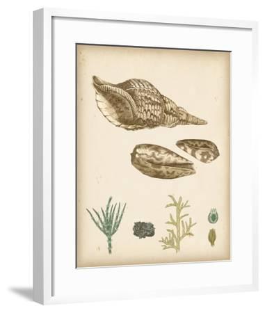 Coastal Memories III-Vision Studio-Framed Art Print